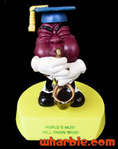 California Raisin Graduate Award
