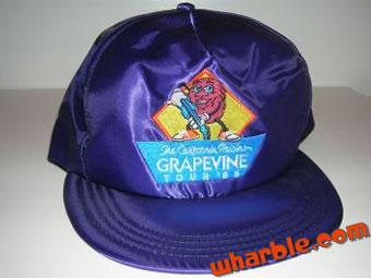 California Raisins Hat