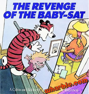 Calvin and Hobbes Book - The Revenge of the Baby-Sat